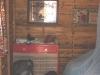 4-cabane-interieur