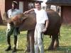 28-moi-elephanteau