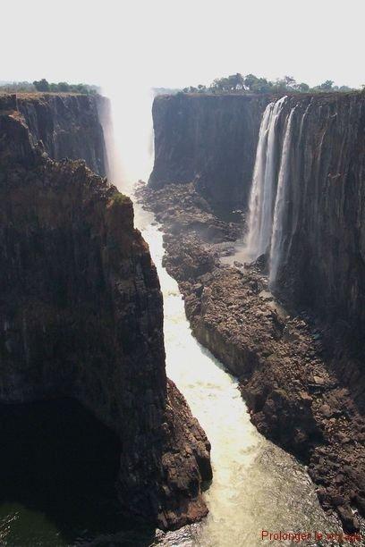 42-vic-falls-zambie